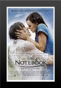 framed the notebook front cover